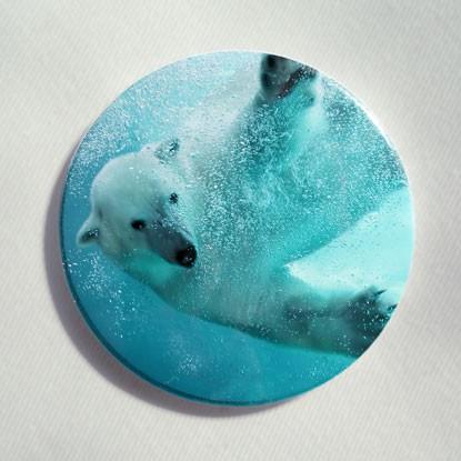 """Button """"Eisbär im Wasser"""""""