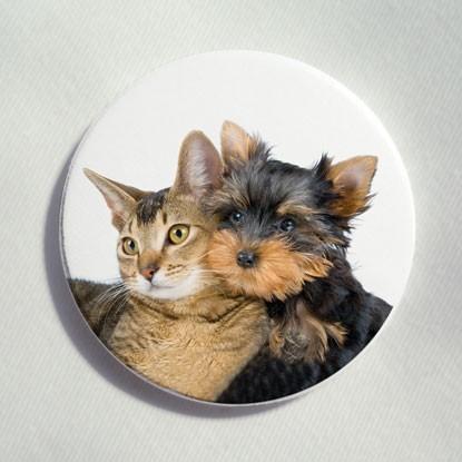 """Button """"Hund und Katze"""""""