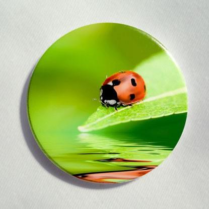 """Button """"Marienkäfer auf einem Blatt"""""""